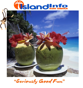 Island Info, Monkey Business, Koh Samui, Thailand.22.jpg