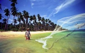 Island Info, fresh seafood, fishermen,  Koh Samui.17