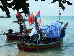 Island Info, fresh seafood, Koh Samui.31
