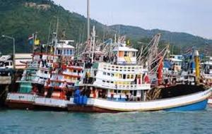 Island Info, fresh seafood, Koh Samui.32