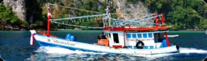 Island Info, fresh seafood, Koh Samui.34