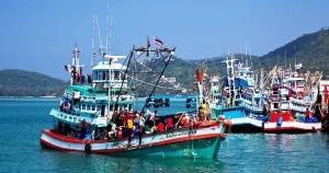 Island Info, fresh seafood, Koh Samui.35