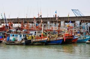 Island Info, fresh seafood, Koh Samui.36