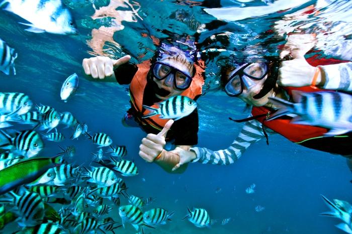 Snorkeling at Samui - Nang Yuan Island
