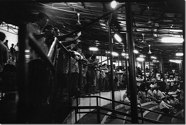 muay-thai-original-lumpini-boxing-stadium-bangkok-สนามมวยเวทีลุมพินี-indoor-sporting-arena-Bangkok-Thailand-2