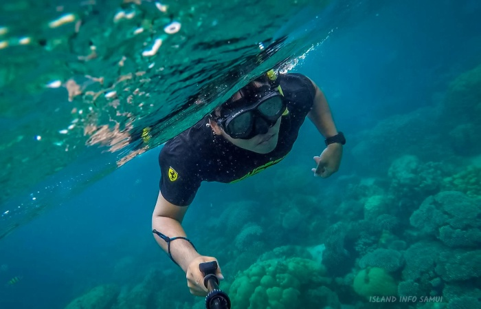 snorkelling_diving_Samui_Island_Info_Tours