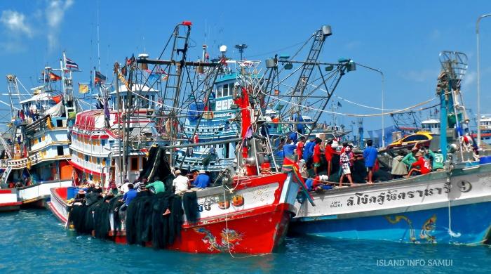 fishing-boats-koh-samui-ISLAND-INFO-TOURS-SAMUI-THAILAND