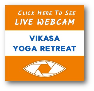 VIKASA YOGA LIVE WEBCAM
