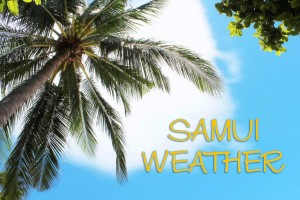 SAMUI WEATHER